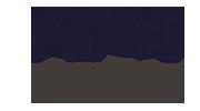 Logotipo Onza - DRAX audio